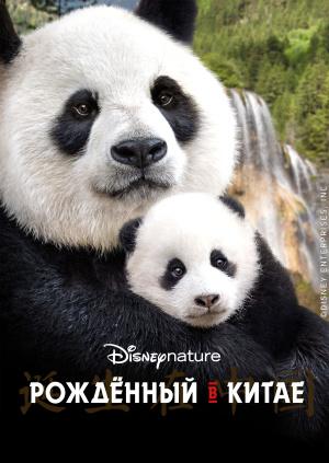 Рождённый в Китае